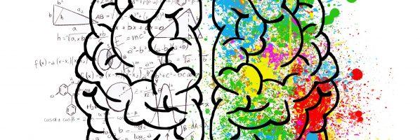 İki (ya da daha çok) Dil Bilenlerin Beyni